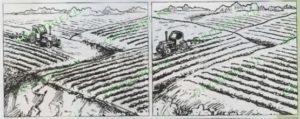 Как правильно пахать поле?