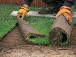 Как правильно уложить рулонный газон?